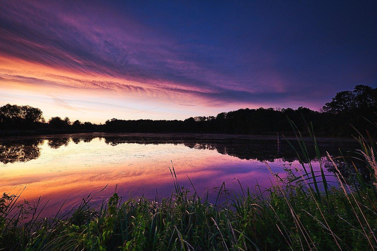 spreewald, landscape, nature