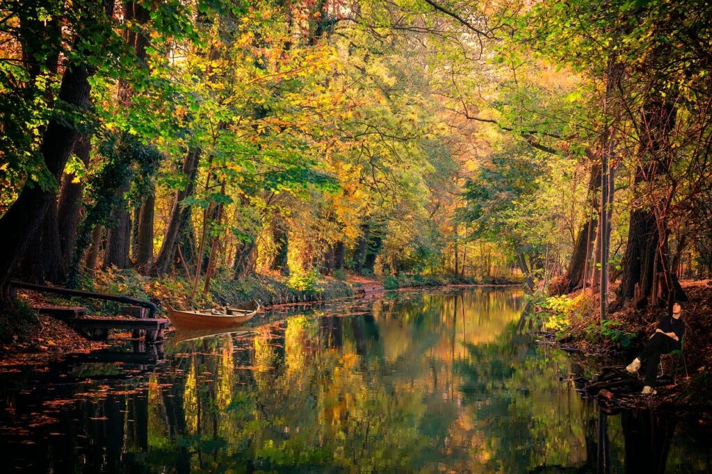 spreewald, water, channel